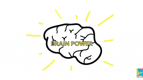 Foods to Boost Brain Power